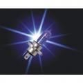 LAMPADINE EFFETTO XENON H9 PIAA XTREME FORCE BLU 65>120w